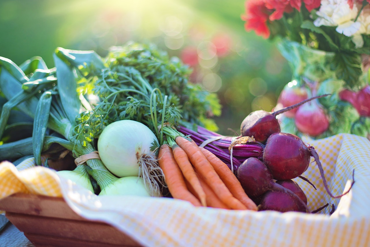 Micronutrients – Know Why They Are Essential!